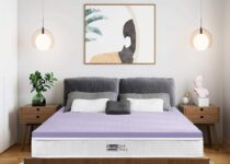 Best mattress pad for back pain bedstory