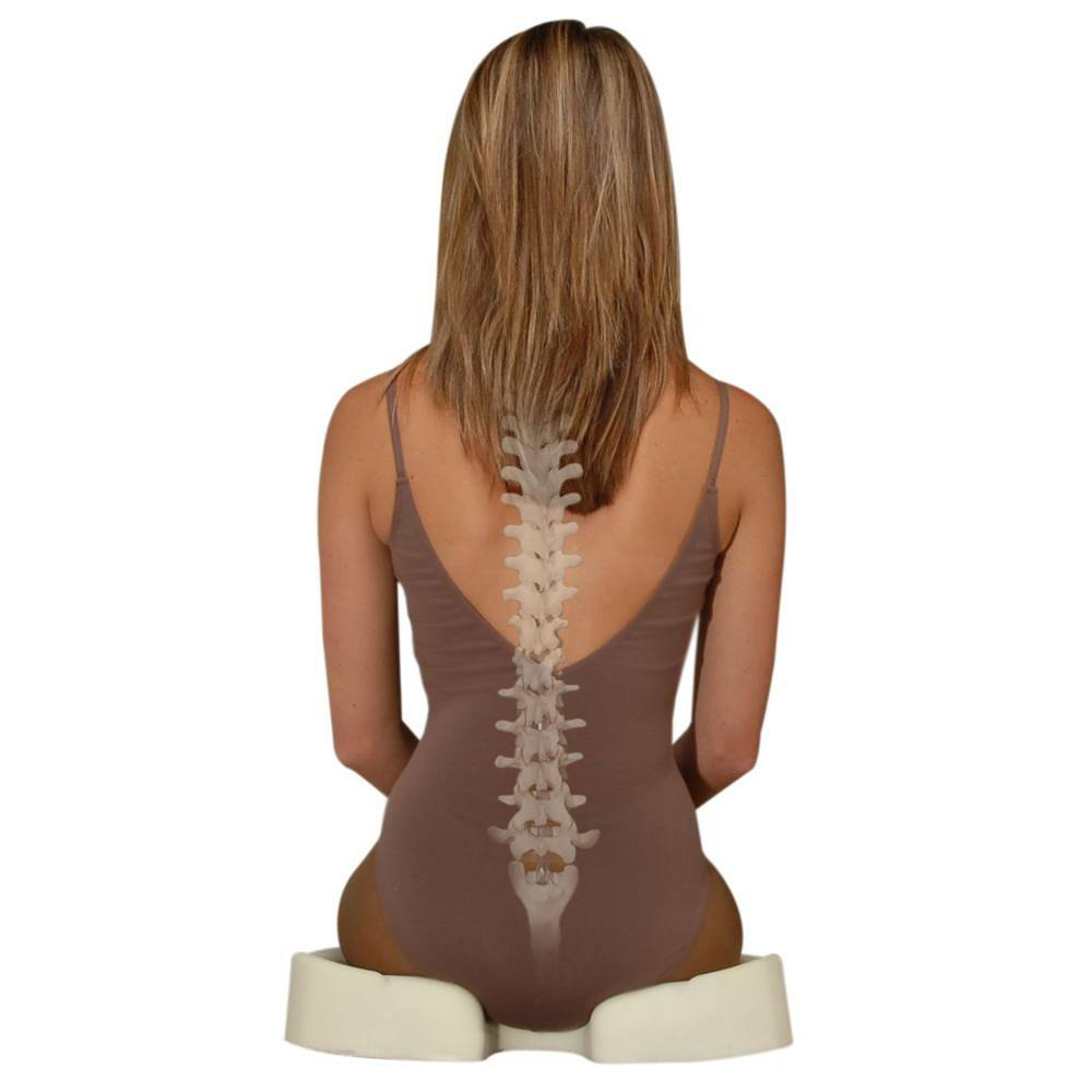 Kabooti 3-in-1 donut seat for coccyx pain