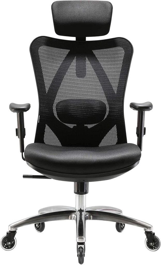 Xuer Ergonomic Office Computer Desk Chair